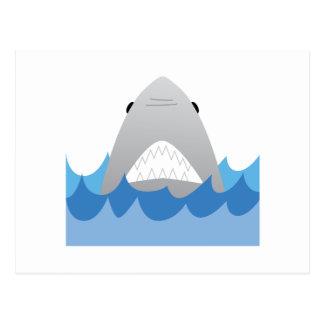Shark In Water Postcard