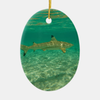 Shark in will bora will bora ceramic ornament