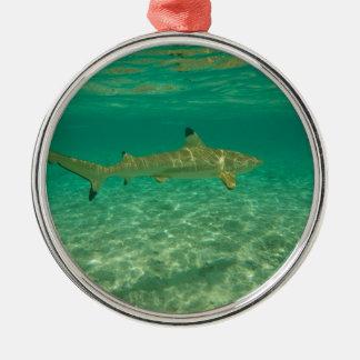 Shark in will bora will bora metal ornament