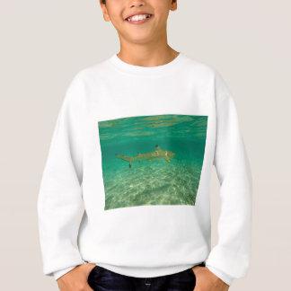 Shark in will bora will bora sweatshirt