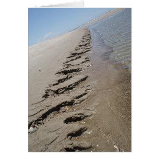Shark Island  North Carolina Outer Banks Note Card