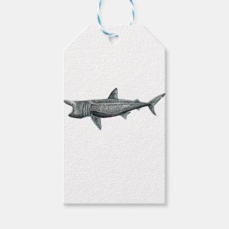 Shark pilgrim gift tags