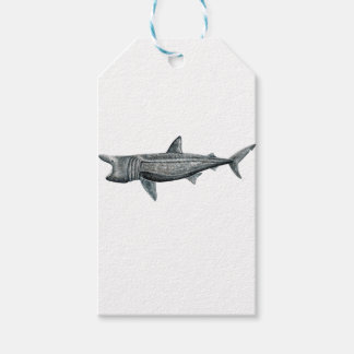 Shark pilgrim pack of gift tags