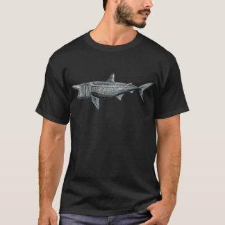 Shark pilgrim T-Shirt