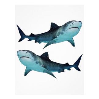 Shark Rally Letterhead