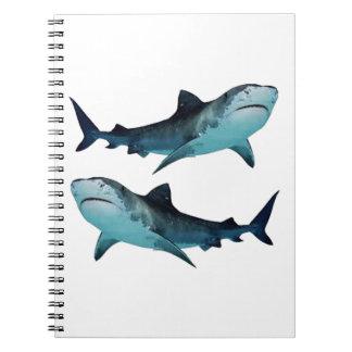 Shark Rally Notebook