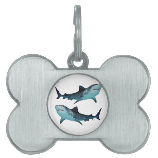 Shark Rally Pet Tag