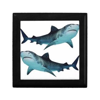 Shark Rally Trinket Boxes