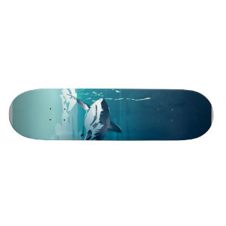 shark skate boards