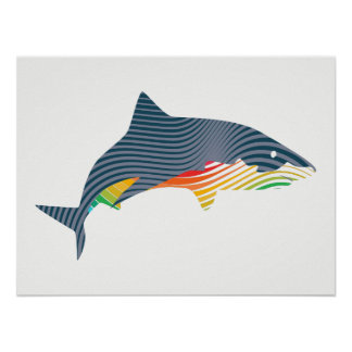 Shark Swoosh Illustration Poster