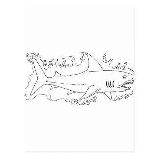 Shark Water Side Drawing Postcard