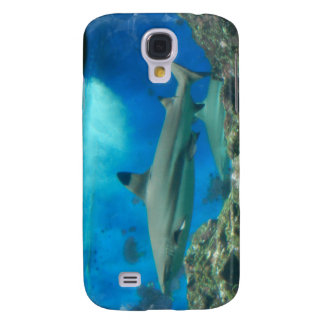 Shark with Reef iPhone 3G Case Samsung Galaxy S4 Case