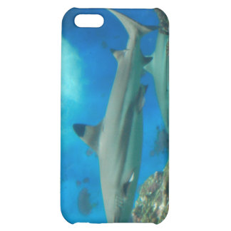 Shark with Reef iPhone 4 Case