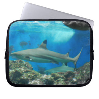 Shark with Reef Laptop Sleeve