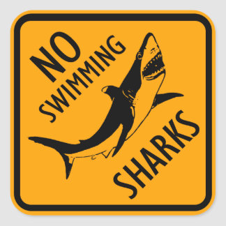 Sharks Australia Sign (pack of 6/20) Square Sticker