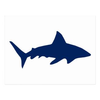 Sharks/Jaws Postcard