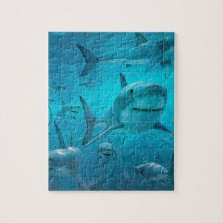 Sharks Jigsaw Puzzle