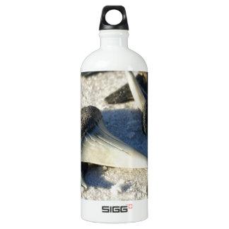 Sharks Teeth from Jax Beach Water Bottle