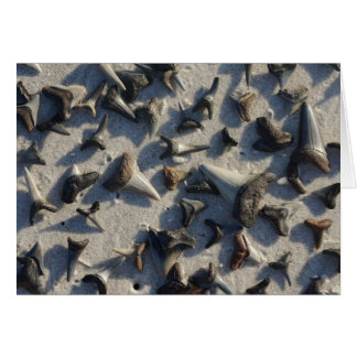 Sharks Teeth Note Card