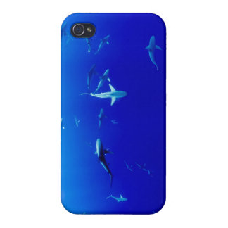 Sharks Underwater iPhone 4 Covers