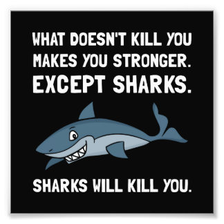 Sharks Will Kill You Photo Print