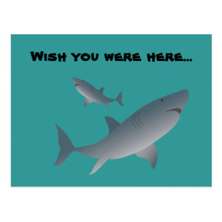 Sharks, Wish you were here... Postcard