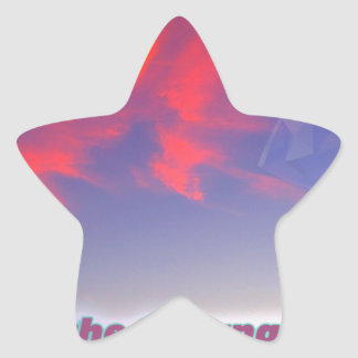 Sharnacity Star Sticker