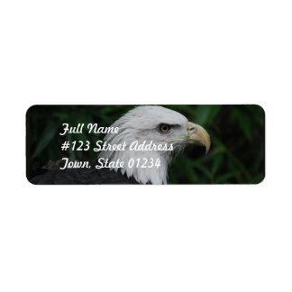 Sharp Beaked Eagle Return Address Label
