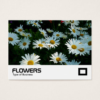 Shasta Daisies Business Card