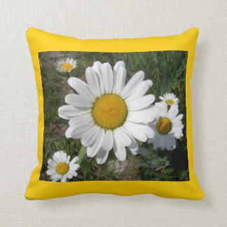 Shasta Daisies (Chrysanthemum maximum) Throw Pillow