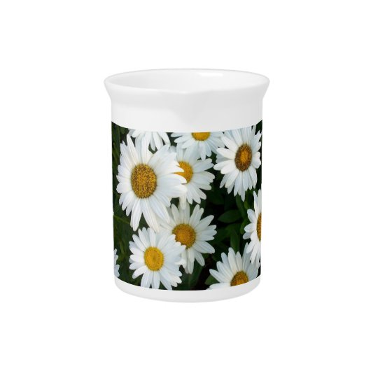 Shasta Daisy Pitcher