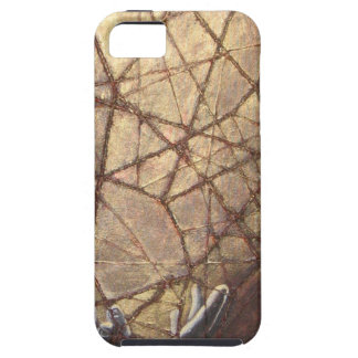 Shattered Glass and Sunlight Case For The iPhone 5