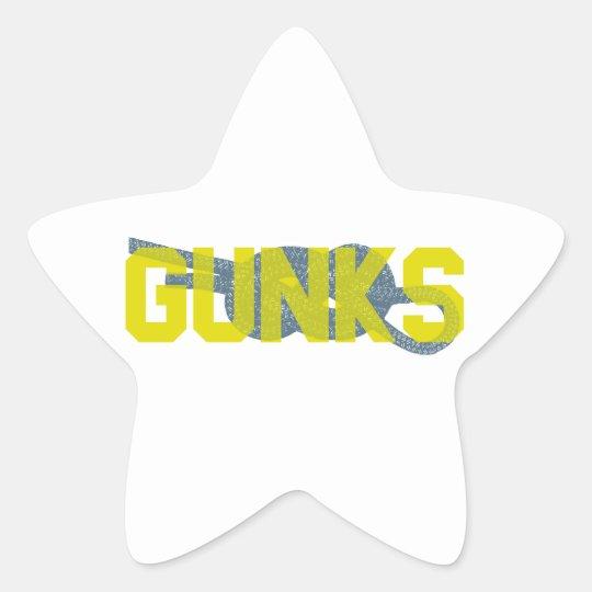 Shawagunks Climbing Star Sticker