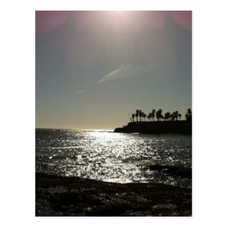 Shaw's Cove Postcard