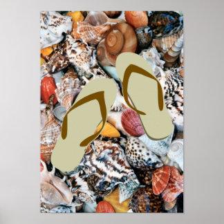 She Sells Sea Shells Poster