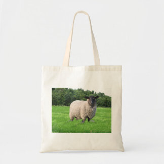Sheal Cloth Grocery Bag