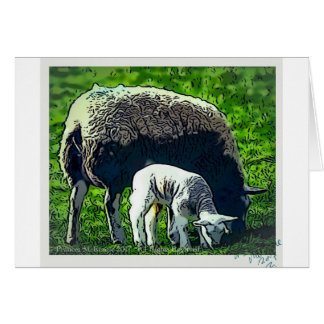 Sheep and lamb cartoon card