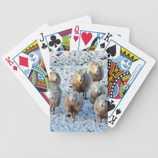 Sheep Bicycle Playing Cards