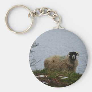 Sheep by the water basic round button keychain