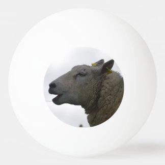 Sheep Chomping on Hay Ping Pong Ball