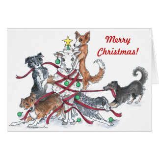 Sheep dog Christmas card