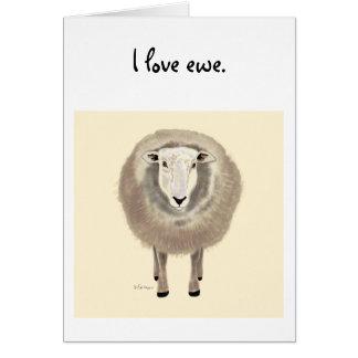Sheep drawing card