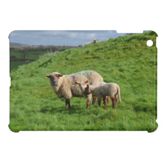 Sheep Family iPad Mini Covers