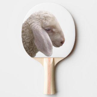 Sheep farm animal photography Ping-Pong paddle