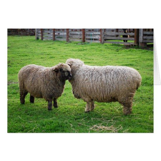 Sheep friends card