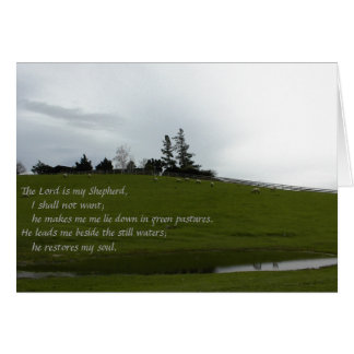 Sheep Grazing in Green Pasture Near Pond Card