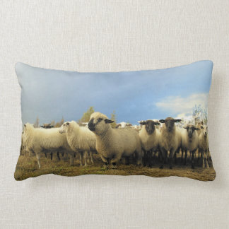 Sheep Herd Lumbar Pillow