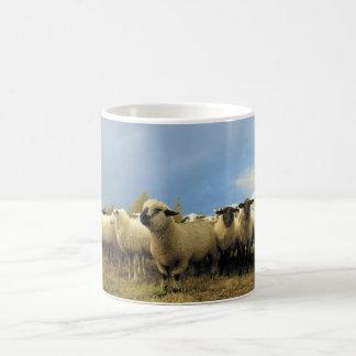 Sheep Herd Mug