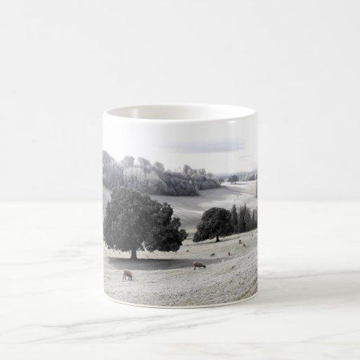 Sheep in a frosty field coffee mug