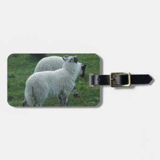 Sheep in Scotland Bag Tag